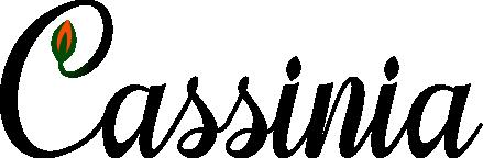 Cassinia